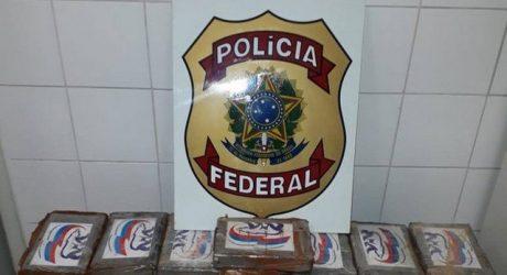 Operação combate quadrilha que escondia cocaína em contêineres com destino  à Europa 39832903f08ef