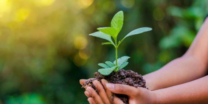 Governo do RJ estabelece primeiras metas da política estadual sobre mudanças climáticas